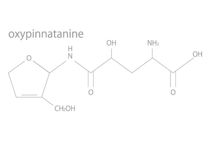 オキシピナタニン