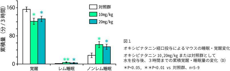オキシピナタニン経口投与によるマウスの睡眠・覚醒量の変化